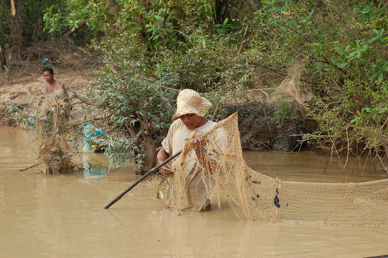 A fisherman in the water with his net.