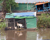 Chicken house boat