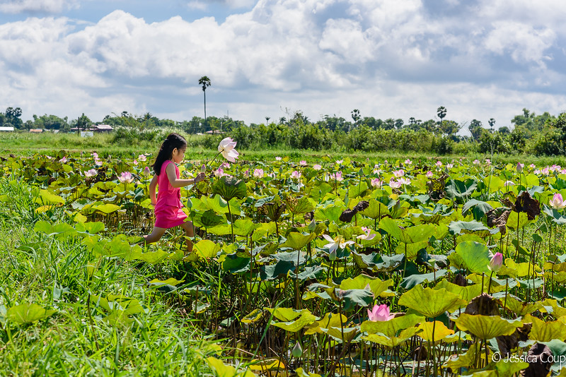 Running in the Lotus Ponds