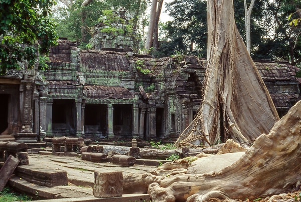First visit to Ta Prohm