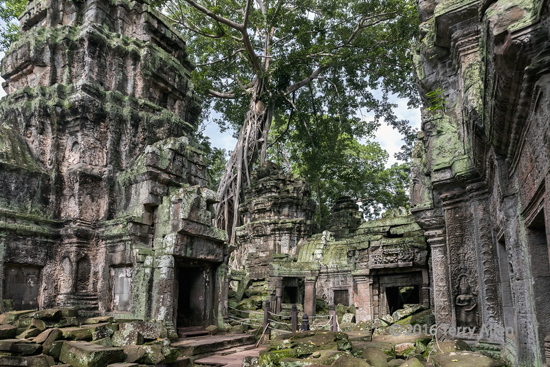 Inner-courtyard,-Ta-Prohm,-Angkor-Thom,-Cambodia