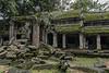 Courtyard,-Ta-Prohm-Temple,-Angkor-Wat,-Cambodia