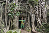 Khmer-classical-dancer-at-Ta-Prohm-temple-with-stangler-fig-(Ficus-gibbosa),-Angkor-Thom,-Cambodia