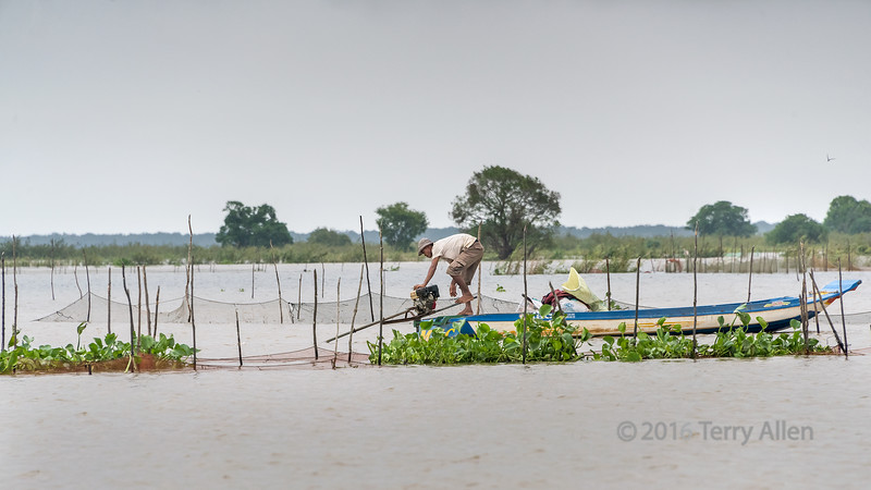 Fisherman-tending-his-nets,-monsoon-season,-Tonle-Sap,-Cambodia
