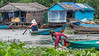 Woman-gathering-water-hyacinths-in-a-light-rain,-Tahas-River,-floating-houses,-Tonle-Sap,-Cambodia