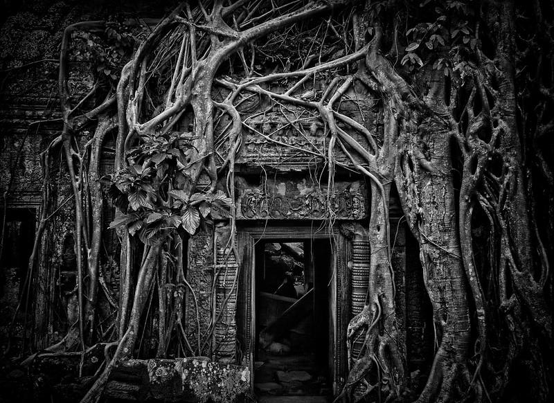 Door at Ta Prohm