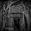 Door at Ta Prohm