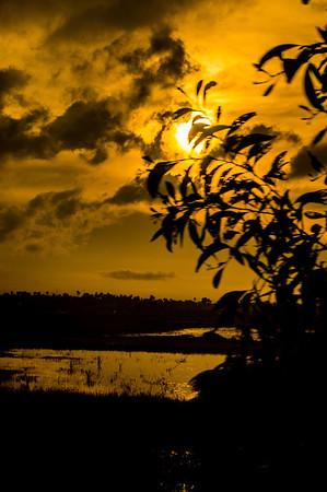 Sunrise, Cambodia