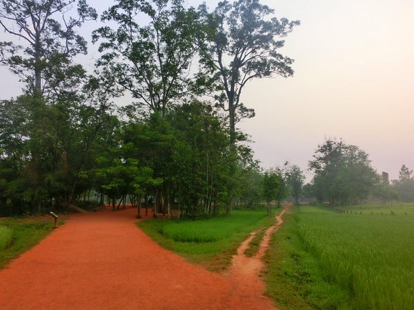 Fork in the road, Cambodia