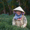 Cambodia and Vietnam - People 2 60