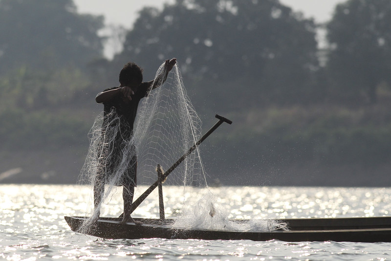 fisherman checking his net at dusk, southern Ramsar site, Mekong River, 3/28/13