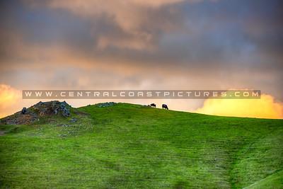 green hills 8372
