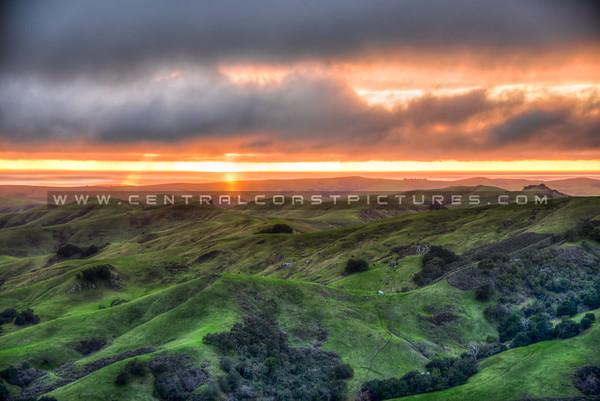 cambria hills-8330