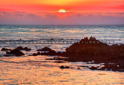 cambria-sunset_4399