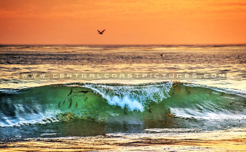 wave_7501-print
