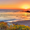 cambria-sunset_4387