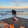 moonstone-beach_3136