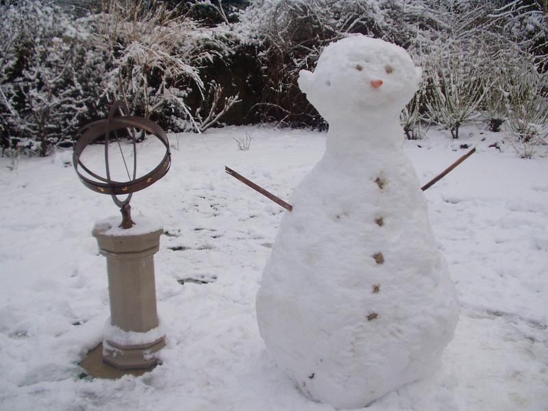 darwin_intelligent_snowman.jpg