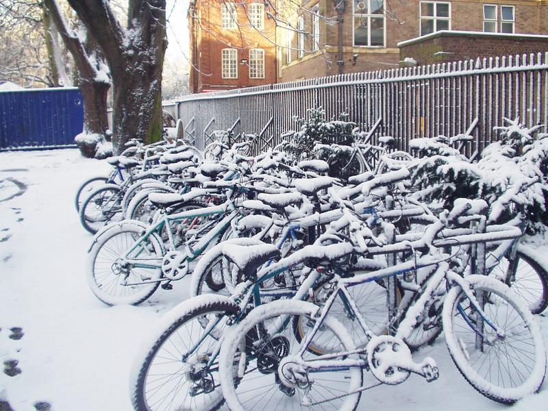 many_bikes.jpg