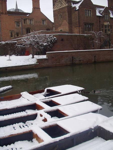 more_snowy_punts.jpg