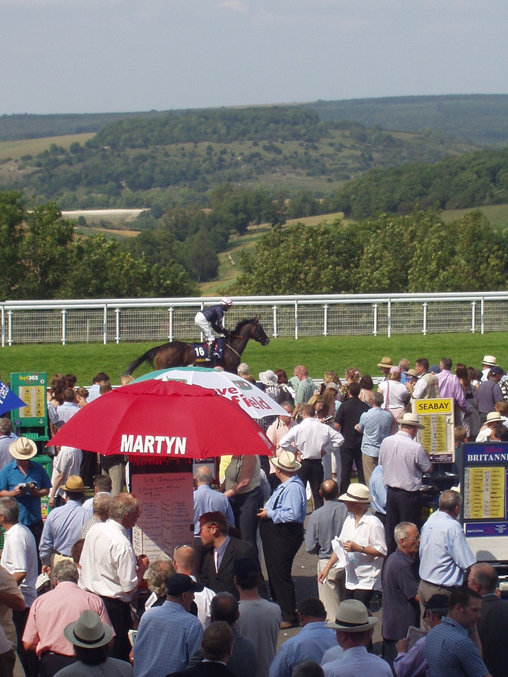 View over Goodwood
