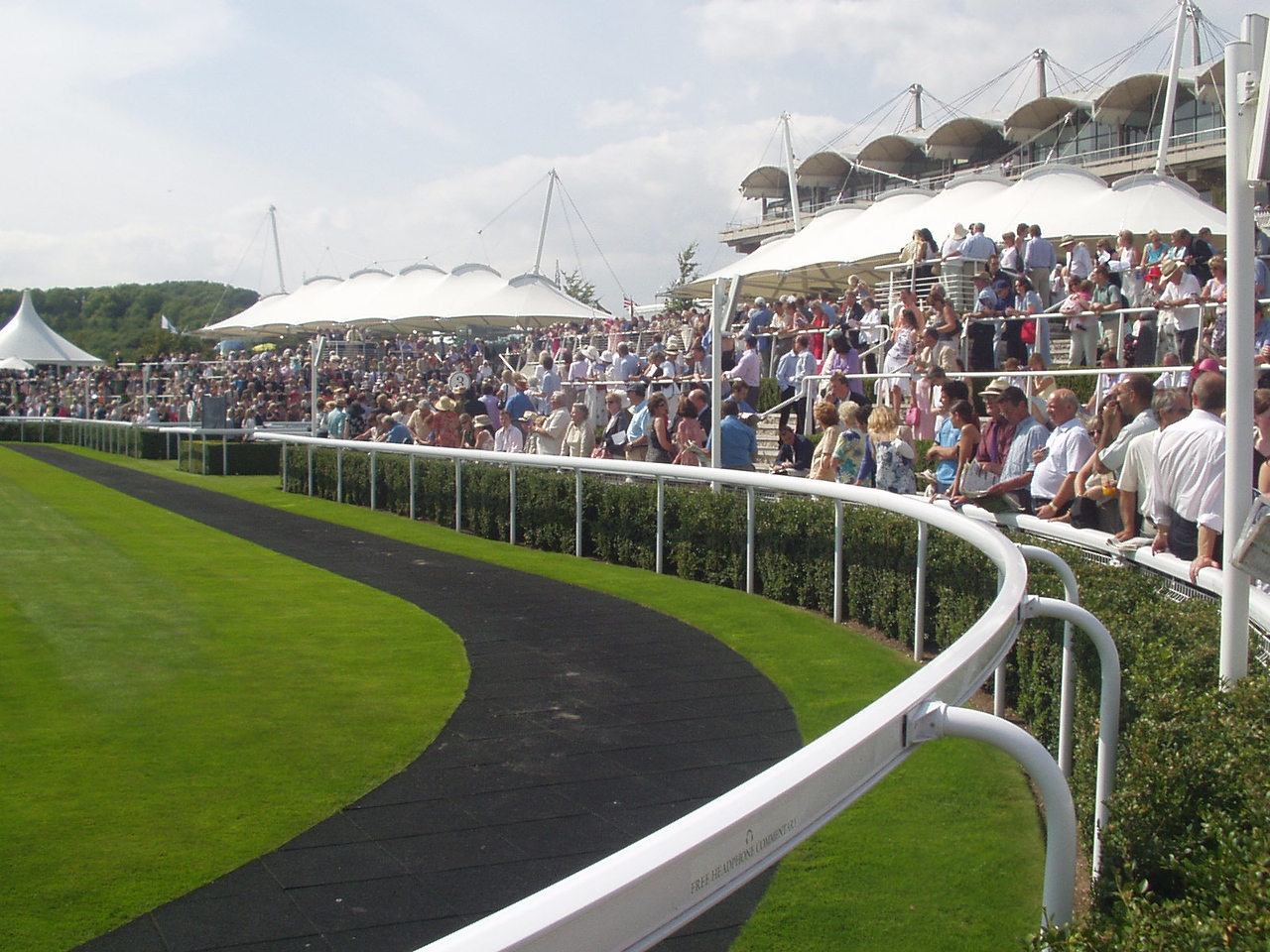 In the parade ring