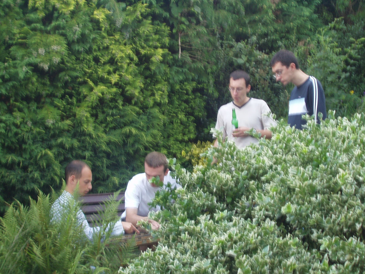 Backgammon in the bushes