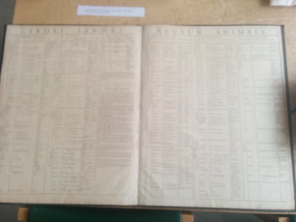 Cambridge Museum of Zoology rare books