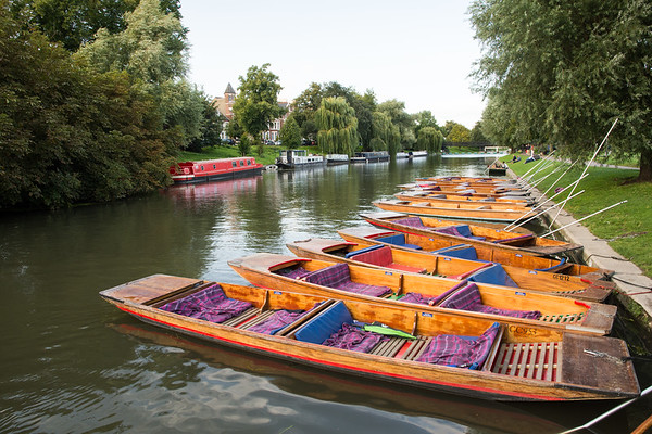 Punts on the River Cam in Cambridge