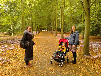 Morning stroll at Anglesey Abbey
