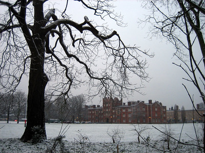 Looking across the rugby fields towards college