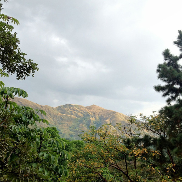 Venezelan landscape