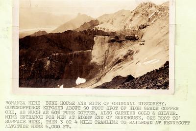 Bonanza Mine w Description