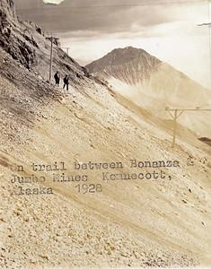 Bonanza Jumbo Trail