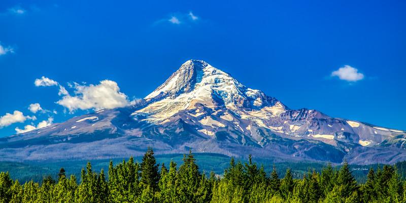 Majestic Mt Hood