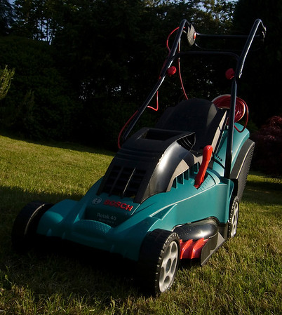 My new (as of June 2008) Bosch Rotak 40 after its first cut.