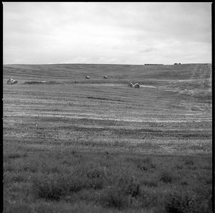 Hasselblad R_13 Acros 100 HC110 South Dakota 7-9-17 002