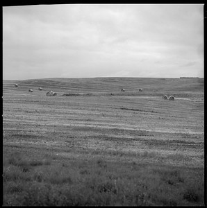 Hasselblad R_13 Acros 100 HC110 South Dakota 7-9-17 003