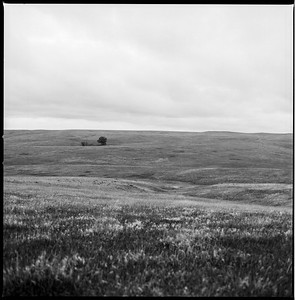 Hasselblad R_15 Delta 100 HC110 South Dakota II 8-17-17 007