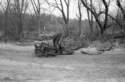 Old Car From Trees