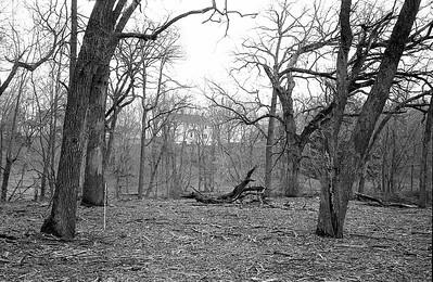 John's house from behind big oak tree stump.
