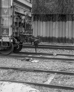 Zorki Stand Development Train and UofM Walk 11-1-15-012