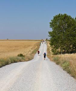 camino16-10