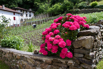 A farmer tends his fields in the tiny hamlet of Gañecoleta on the Varcarlos route to Roncesvalles.
