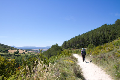 Author Anna Dintaman walks toward a forest outside of Pamplona, Spain.