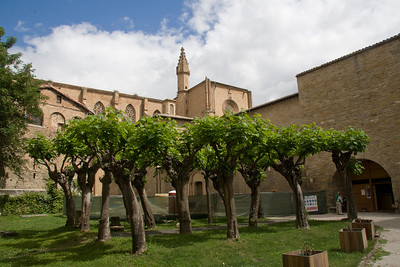 The green and lush courtyard of the cathedral of Pamplona, worth a visit on the Camino de Santiago.