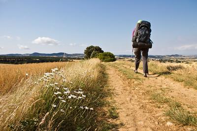 Author Anna Dintaman walks along fields of wheat in Navarra on the Camino de Santiago.