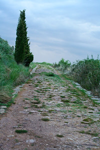 Much of the Camino de Santiago follows the Roman Via Trajana.   Just outside of the village of Ciraiqui, thee ruins of the Roman road are most visible.
