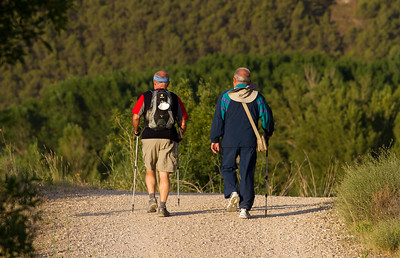 Pilgrims walk the Way of Saint James together near Estella, Spain.