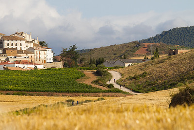 Pilgrims on the Camino de Santiago approach the town of Ciraiqui, near Estella.